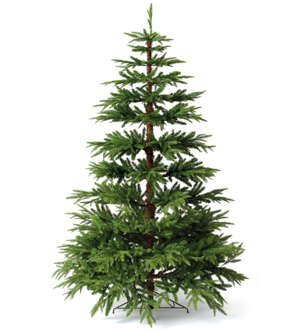 Woodland Pine Tree