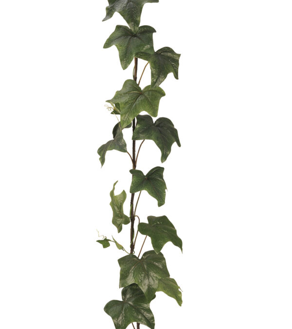 GIANT IVY GARLAND