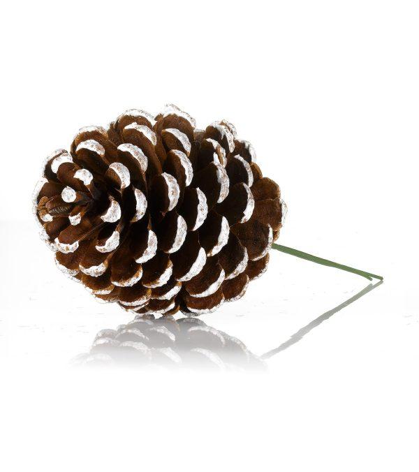 Pine Cone Pick Tipped 10cm