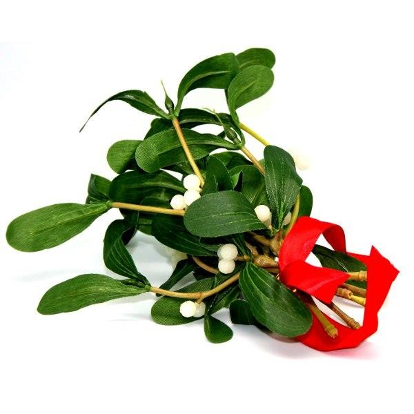 Mistletoe Sprig