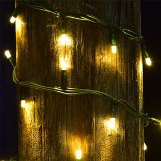 Outdoor String Lights - Pro Series