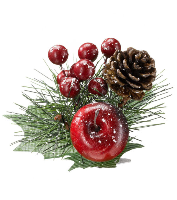 Pine cone and Berry Pick