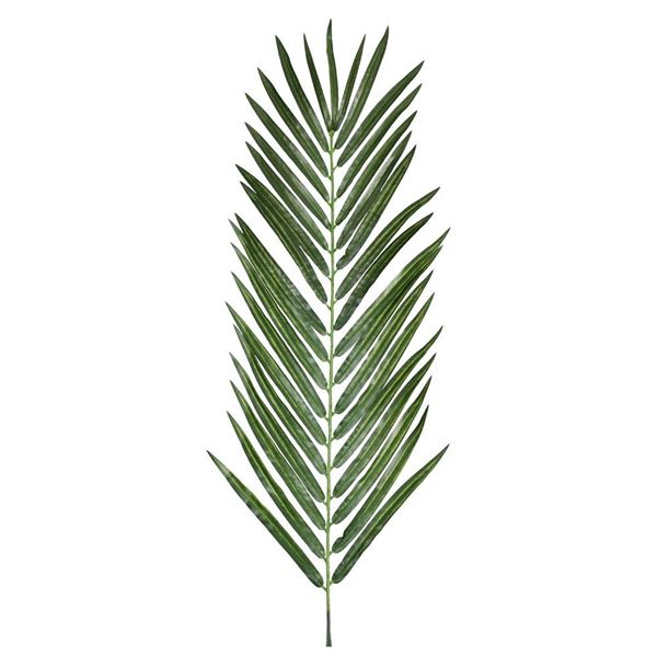 Areca Palm Leaf - 122cm Long - Green - Sold Individually
