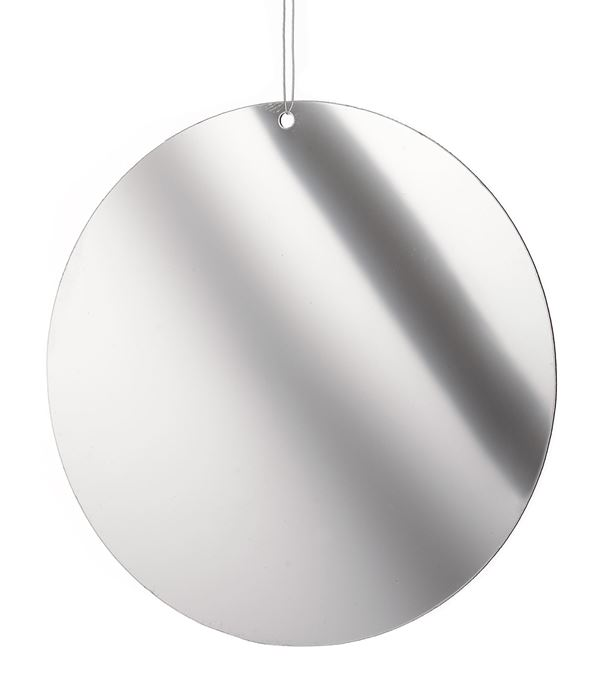 mirror disks