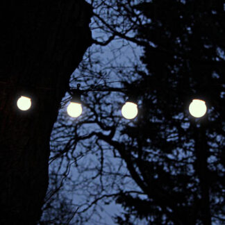 Ice White Festoon Lights